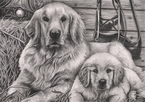 how to draw dogs and puppies and puppy graphite drawing by pen tacular artist on deviantart