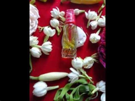 Minyak Malaikat Subuh minyak malaikat subuh asli