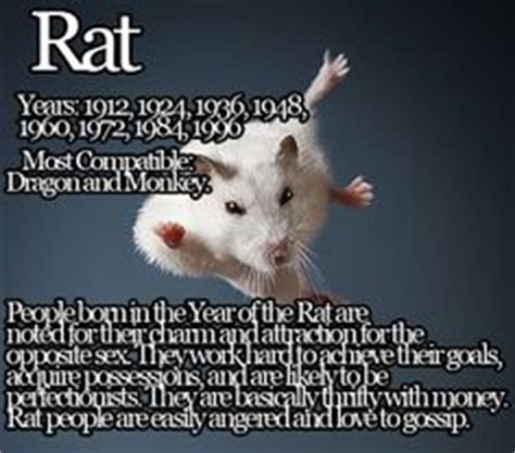 water rat personality traits 2015 autos post