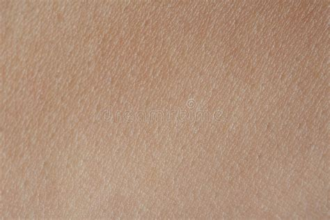 human skin texture macro stock photo 293974619 macro of texture human skin stock image image of organ flat 78665253
