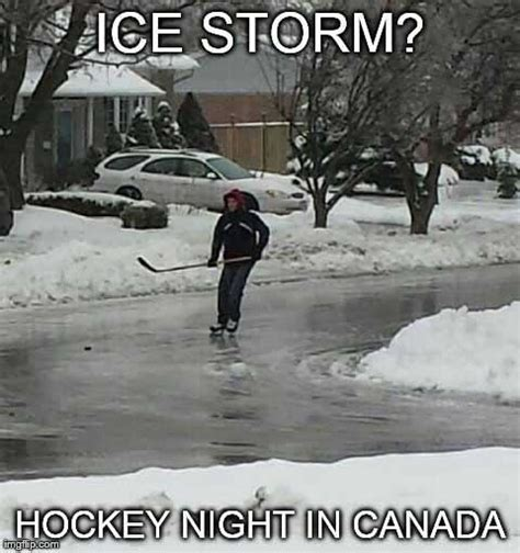Canada Snow Meme - the 50 funniest winter memes of all time gallery