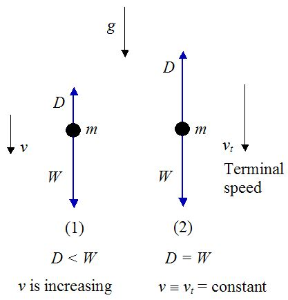 physics of the human lose weight for books physics of skydiving