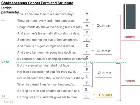 sonnet template elit 17 class 19 the sonnet