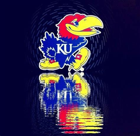 jayhawk tattoo designs kansas jayhawk designs my awsome ku jayhawk