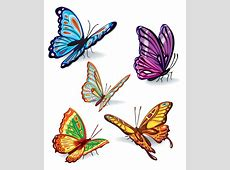Butterfly Set design Vector   Webbyarts - Download Free ... Free Clipart Downloads Butterflies