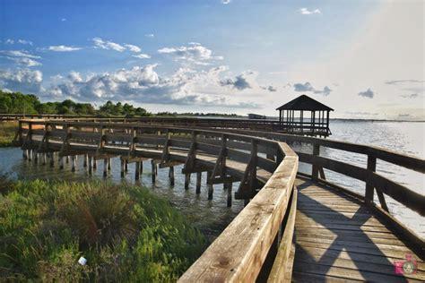 porto caleri rosolina visitare il giardino botanico litoraneo di porto caleri a