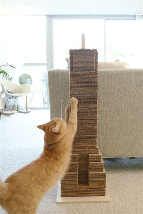 diy cat 10 cat toys dipfeed