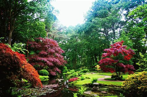 imagenes de jardines en otoño contemplar un jard 237 n japones blogdepelusita
