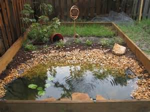 Backyard Frog Pond by Box Turtle Indoor Habitat Ideas Images Amp Pictures Becuo