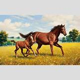 Images Of Baby Horses Running   1680 x 1050 jpeg 540kB