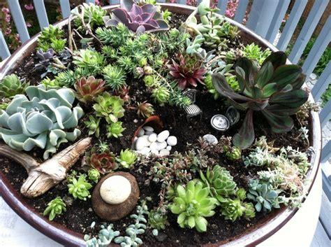 Succulent Dish Garden Ideas Succulent Dish Garden Gardens Event Inspiration Pinterest