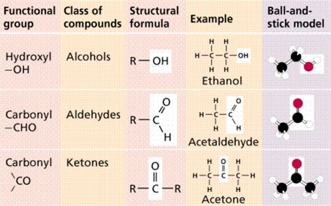 carbohydrates which one of the following characteristics lon capa chemistry ii water and organic molecules