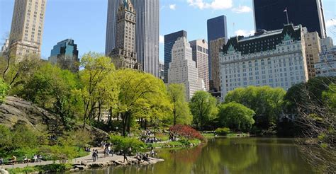 central park boat rental hours manhattan tours top nyc attractions gray line new york