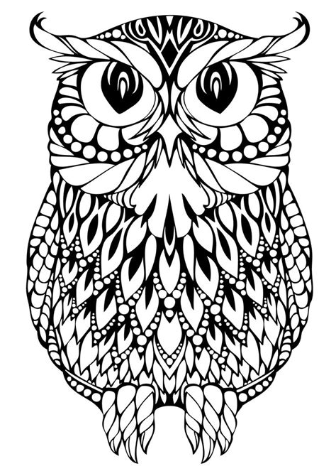 owl coloring pages images decorative owl adult anti stress coloring page black and
