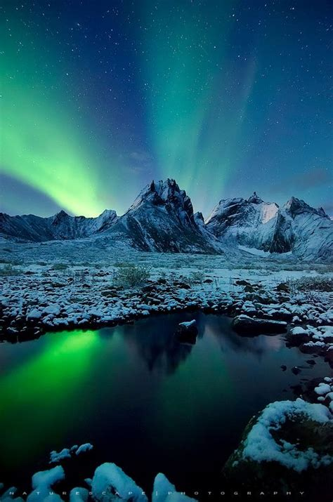 northern lights tours canada 33 best yukon images on