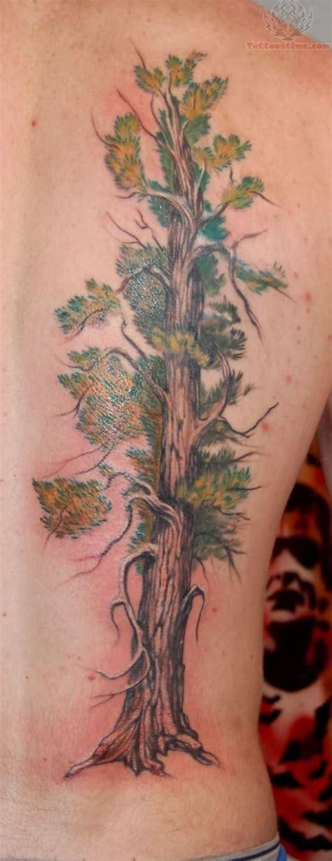 tree tattoo on back tree on back