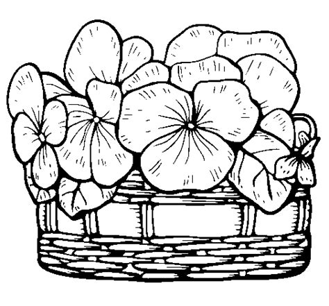 coloring pages of flower baskets basket of flowers 12 coloring page