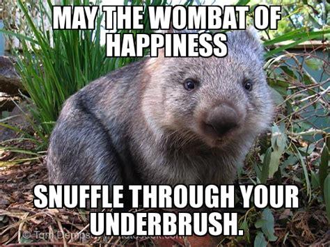 wombat weknowmemes generator