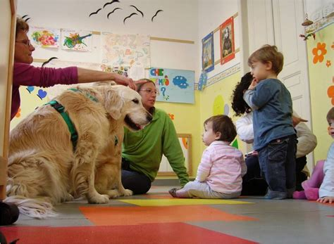 pet therapy scuola di pet therapy pet therapy cinofilia pet therapy terapia attivit 224