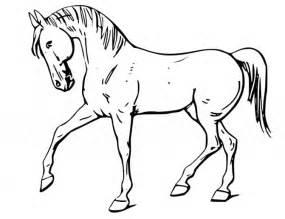 konie kolorowanki dla dzieci konie