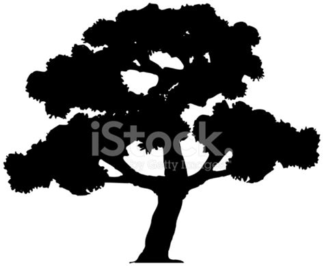 trees silhouettes stock illustration image of color 43384093 樹剪影 stock vector freeimages