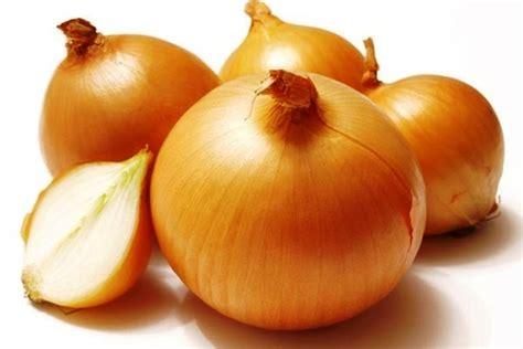 cara buat zpt dari bawang merah manfaat bawang bombay bagi kesehatan tubuh