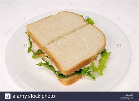 Tuna Mayo Pyramid Bread tuna mayo sandwich with lettuce on white bread on a white plate on stock photo royalty free