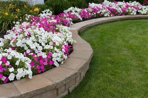 how to start a flower bed how to create a flower bed in front of your house