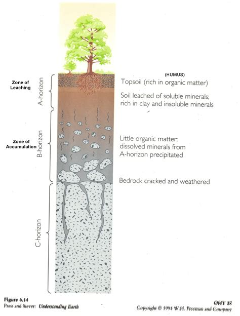 soil horizons diagram web page for terry j boroughs