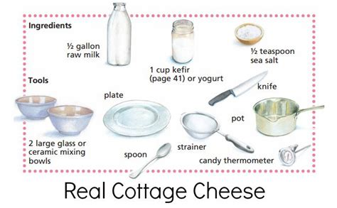 cottage cheese production probiotic cottage cheese the healthy home economist