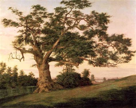 what is the history of trees 10 trees in history history in the headlines