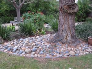 Landscape Rock Around Trees Creating A Creek Bed Intro Project