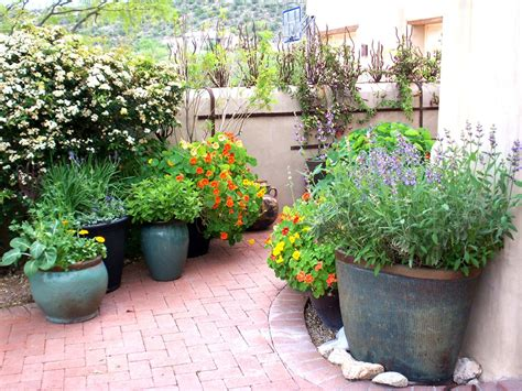 Potted Garden by 10 Potted Garden Ideas Haluchs Landscaping Products