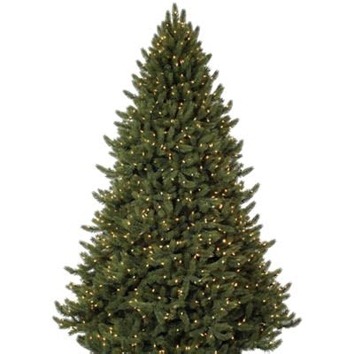home depot live christmas trees for sale shop all types of real trees the home depot