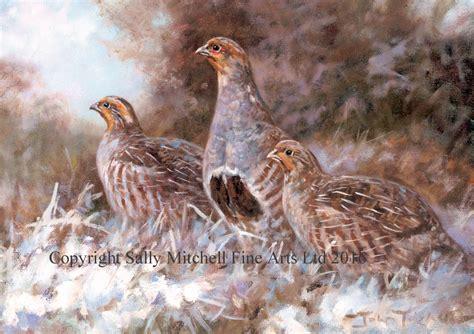 english partridge pack   gamebird shooting christmas cards cx
