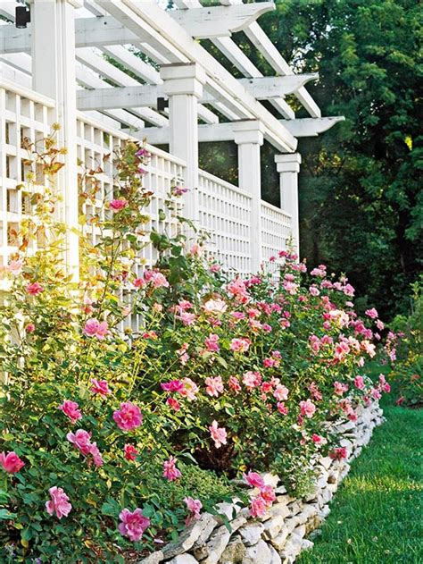 backyard trellis designs 12 diy trellis designs for privacy