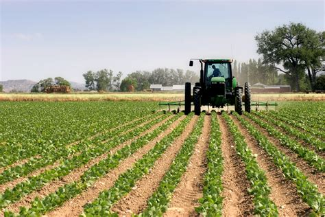 growth in s agricultural scarce skills in south africa