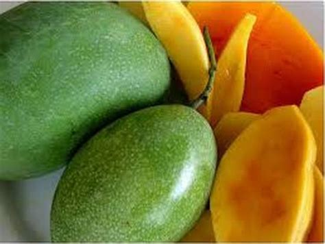 gambar proses membuat jus mangga gambar buah buahan daunbuah com