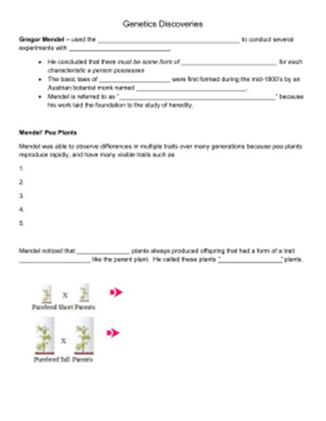 11 4 section assessment biology answers chapter 11 section review answer key
