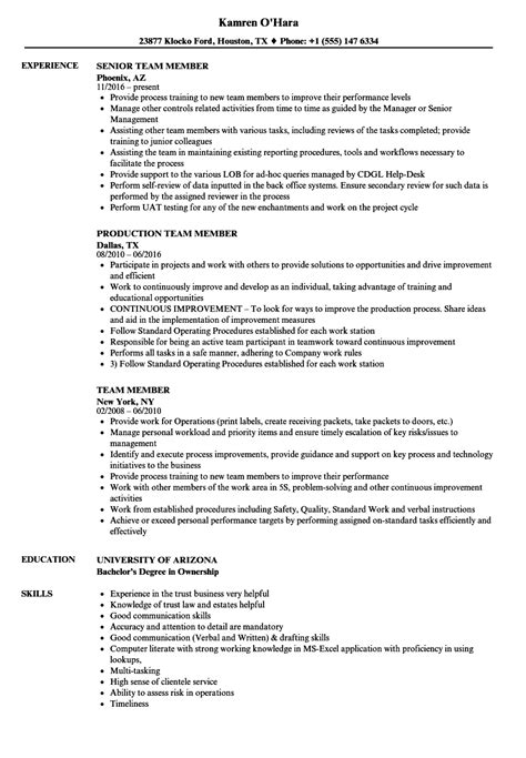 generous computer literate resume contemporary