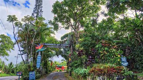 edens garden have 20m you can buy the garden of eden in hawaii
