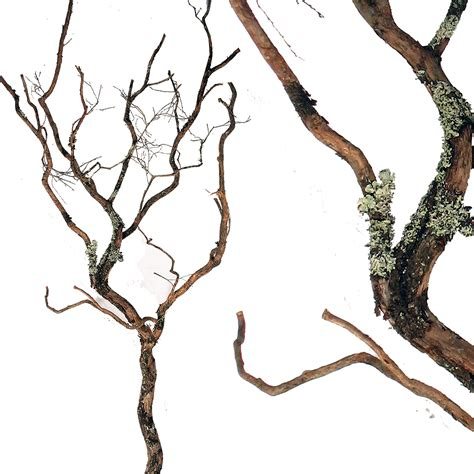 faux tree branches decorative branches dragonwood trees