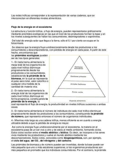 cadenas troficas ecologia ecolog 237 a cadena trofica