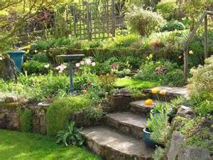 terraced garden ideas gardening pinterest