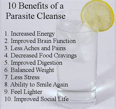 Detox Cleanse Benefits by 25 Best Ideas About Parasite Cleanse On