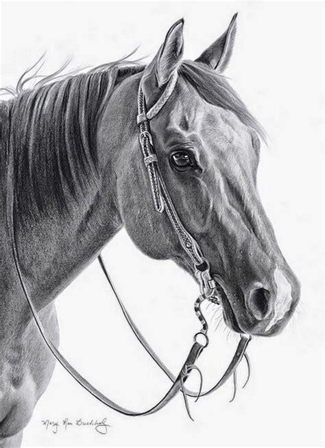 caballo a lapiz dibujos de animales dibujos caras caballos lapiz dibujos pinterest l 225 piz