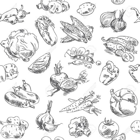 vegetables drawing vegetables clipart sketch pencil and in color vegetables