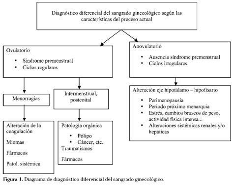 ciclos menstruales cortos sangrado de origen ginecol 243 gico