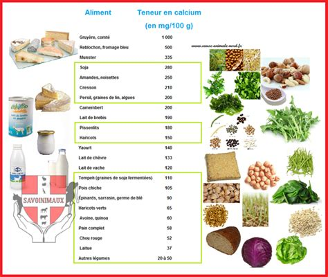 alimenti contenenti estrogeni aliments riches en vitamine calcium acheter vigora en