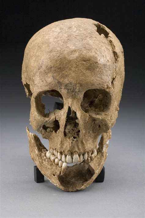 colonial skull newsdesk